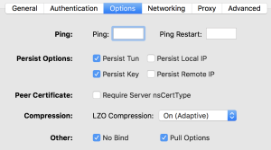 OpenVPN Settings - Options
